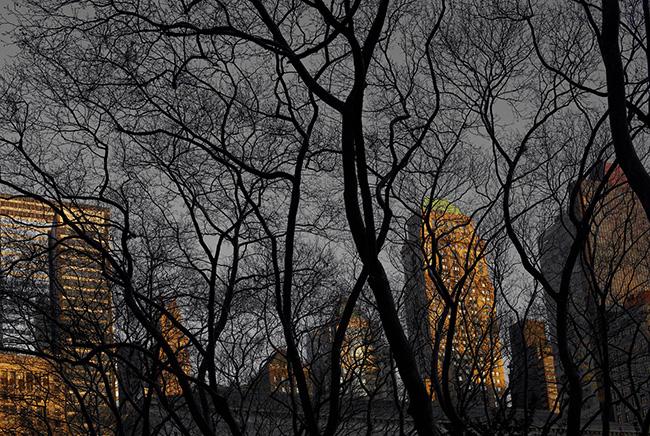 New_York_2013_2053_0558